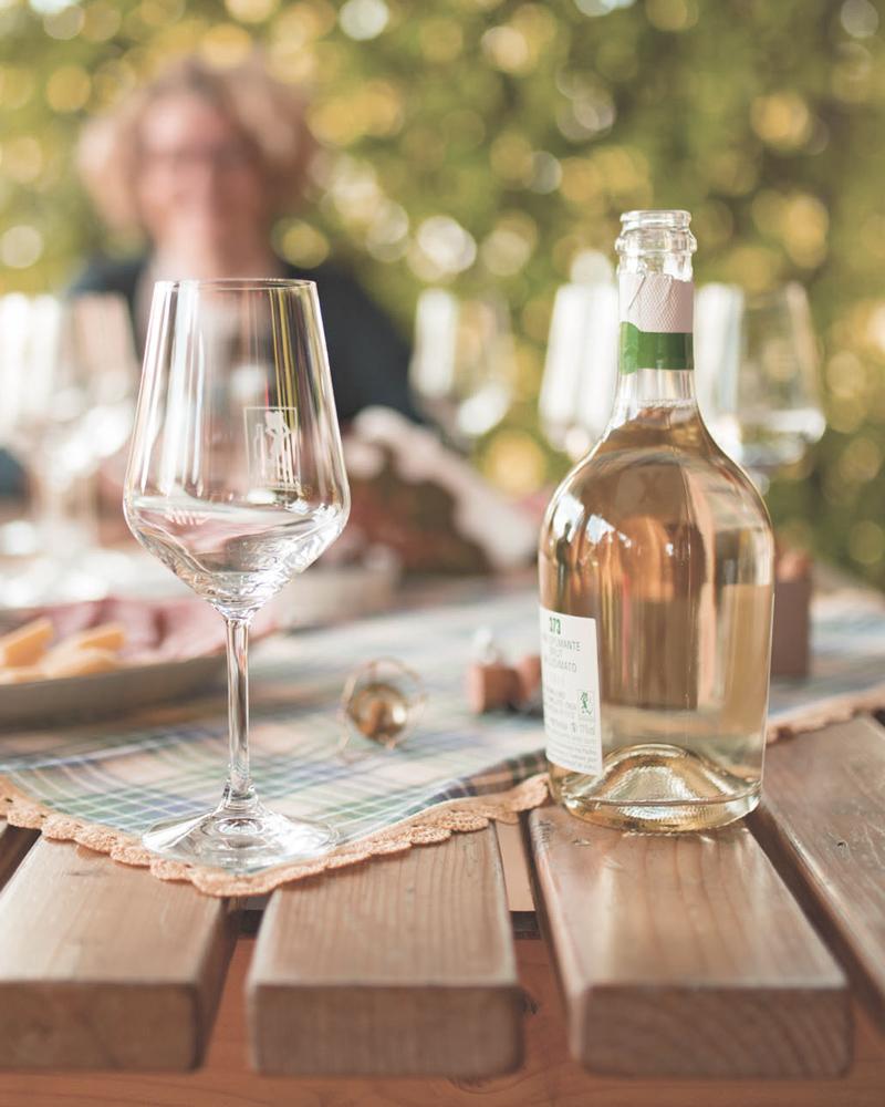 degustazioni-vini-bellese